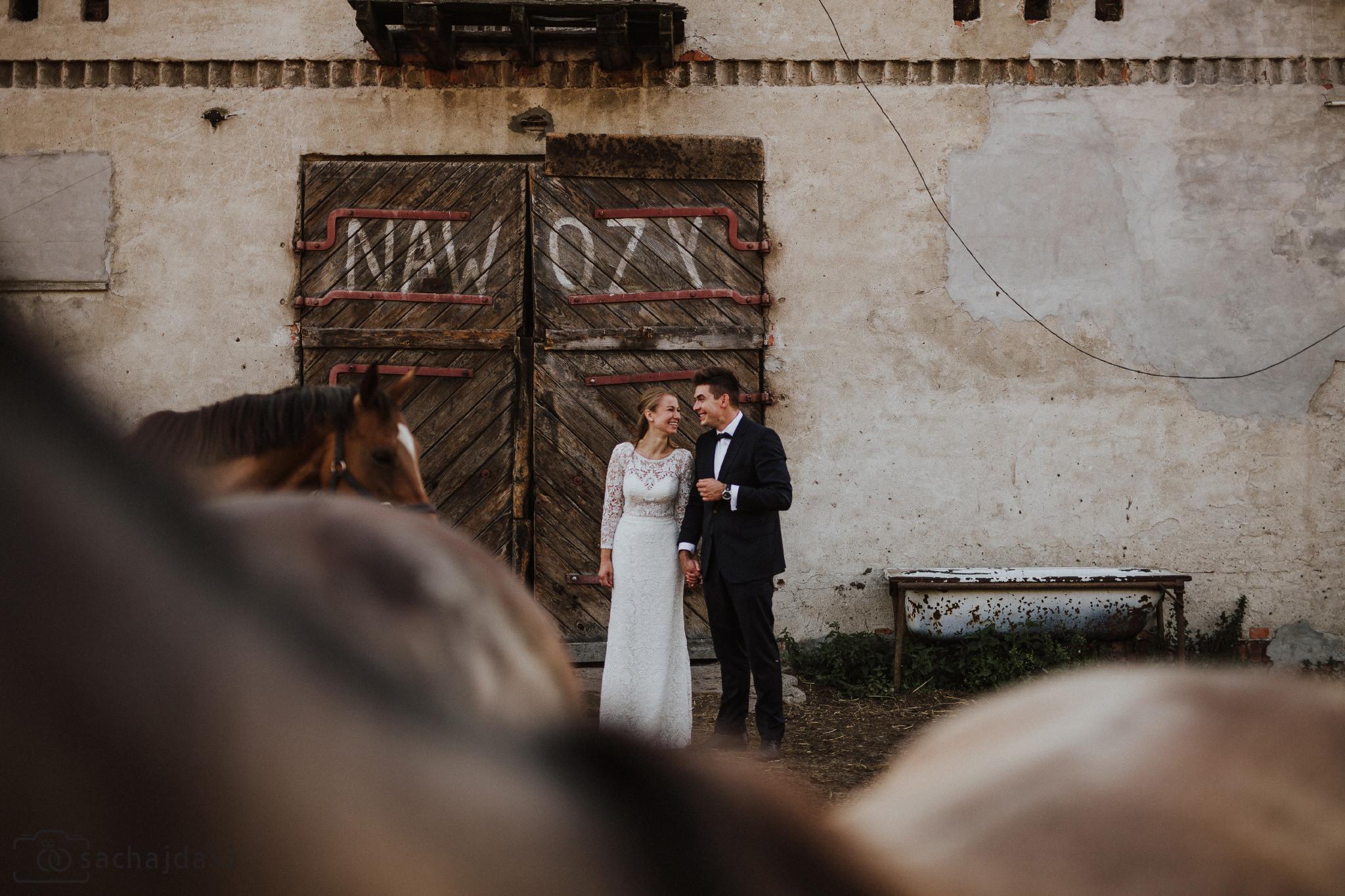 sesja ślubna plenerowa konie